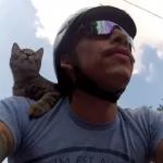 御主人様と一緒にバイクでお出かけする猫