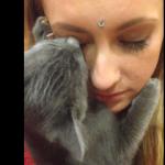 風変わりな愛情表現する猫