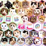 猫の日を記念して画像を作ってみた