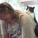 母さんお肩をたたきましょ~♪ 癒し癒され、マッサージ大好き猫