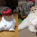 ガチャガチャの商品に色も体勢もそっくりすぎる猫