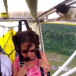 なんで飛んでるにゃー!!空を飛ぶ飛行機の翼の中から突如現れた猫