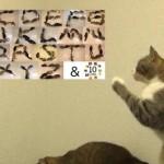 A・B・C・D・E・F・G〜♪ネコ文字で覚えるアルファベット