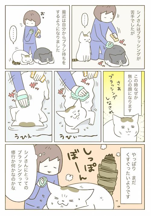 1p_シノさんとブラッシング