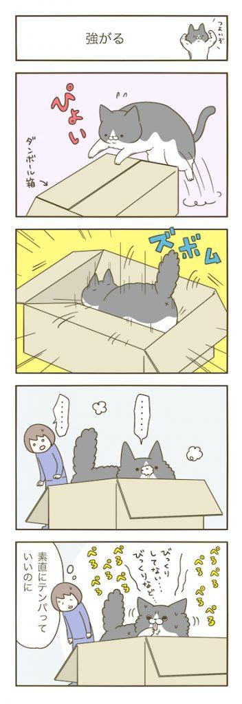 tsuyogaru