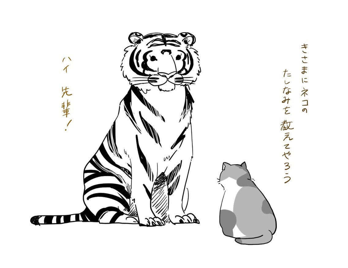 小さなネコ先輩を慕う大きなトラ後輩のイラストがほっこり可愛い