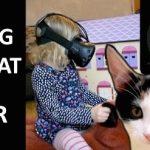 猫の背中に乗って冒険!VRで愛娘に夢のような体験をさせてあげるお父さん