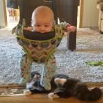 子守りも堪能中!?赤ちゃんも猫も笑顔になれる斬新な遊び