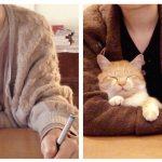 子猫の時からここが好き!飼い主さんの腕の中が大好きな猫のビフォーアフター