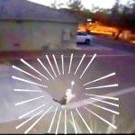 監視カメラは見た!猫が道路の反射板で遊んで壊しちゃう決定的瞬間