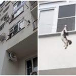 ニャンコ危機一髪!3階の洗濯ロープから落下するも奇跡のキャッチで生還!