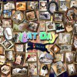 【2018年版】ねこ好き必見!!Twitterで話題の猫系アカウント60名を一挙大紹介