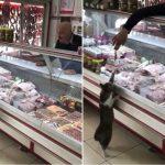 肉屋でニャンコが店員に注文!「お肉頂戴ニャン」「あいよ」